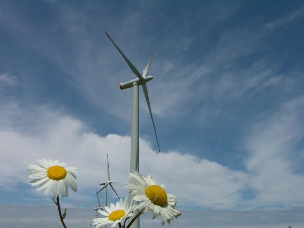 Photo: Hokkaido Green Fund